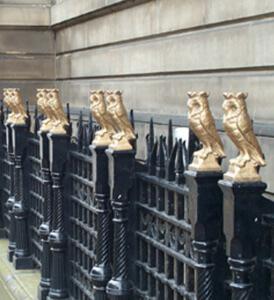 municipal-owls-1